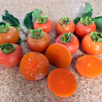Persimmon Flat Seedless By DaleysFruit.com.au [All Rights Reserved]