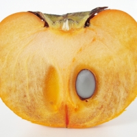 Fuyu Persimmon Fruit Cut in half showing 1 seed By Batholith [Public domain], from Wikimedia Commons