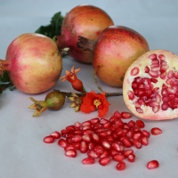 Pomegranate Elche By DaleysFruit.com.au [All Rights Reserved]