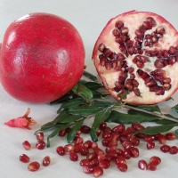 Pomegranate Wonderful fruit