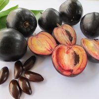Black Apple fruit
