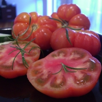Marmande Tomatoes By Alpha from Melbourne, Australia (Ridged - Rouge de Marmande Tomatoes) [CC BY-SA 2.0  (https://creativecommons.org/licenses/by-sa/2.0)], via Wikimedia Commons