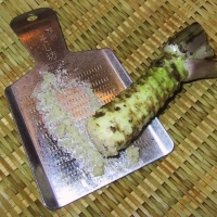 Wasabi root being grated for use By Chris 73 [CC BY-SA 3.0 (https://creativecommons.org/licenses/by-sa/3.0/deed.en)] From Wikimedia Commons