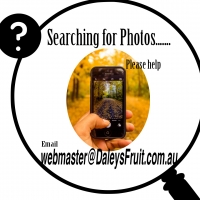 Searching for Photos please help By DaleysFruit.com.au [All Rights Reserved]